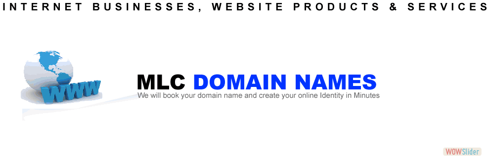 MLC_Business_Group_Main_Banner-DOMAIN-NAMES